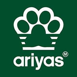 ariyas [adidas parody] green