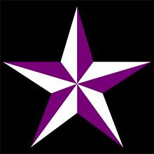 極楽門 星(紫)